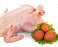 مرغ و تخم مرغ