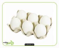 تخم مرغ بسته بندی 6 عددی