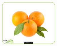 پرتقال - 500 گرم