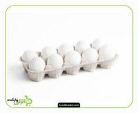تخم مرغ بسته بندی - 12 عددی