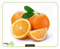 پرتقال تامسون - 1 کیلوگرم